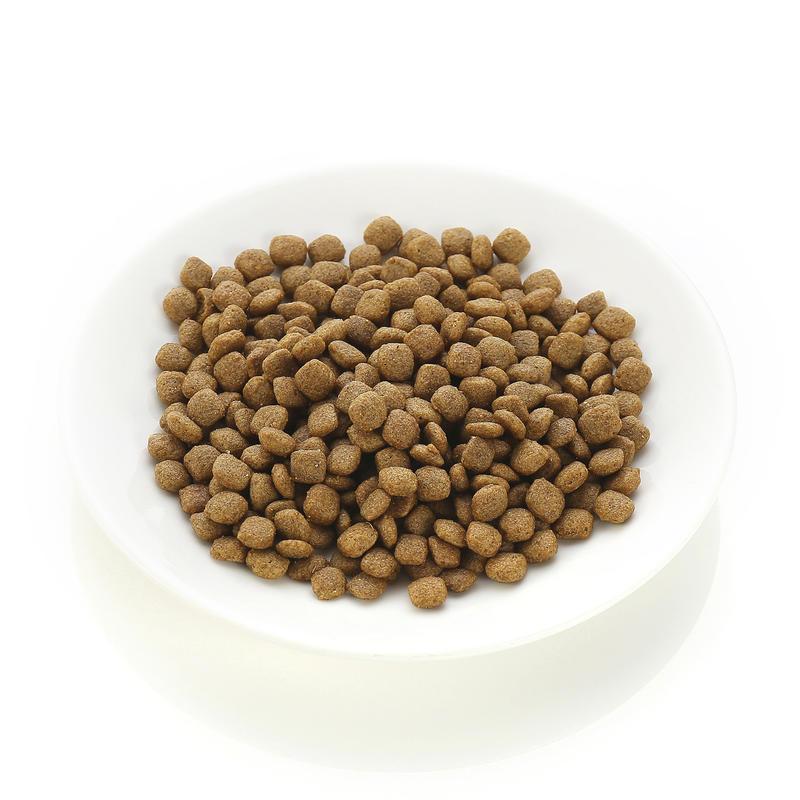 네츄럴코어 유기농 에코 2 오리고기 작은알갱이 2kg