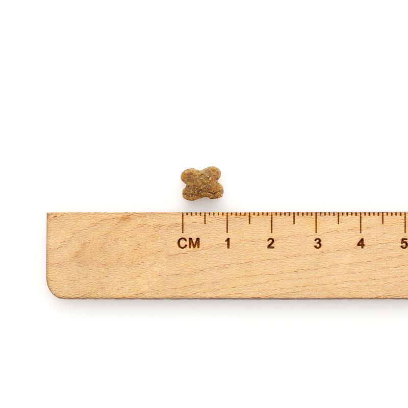 now 그레인프리 어덜트 스몰브리드 2.72kg