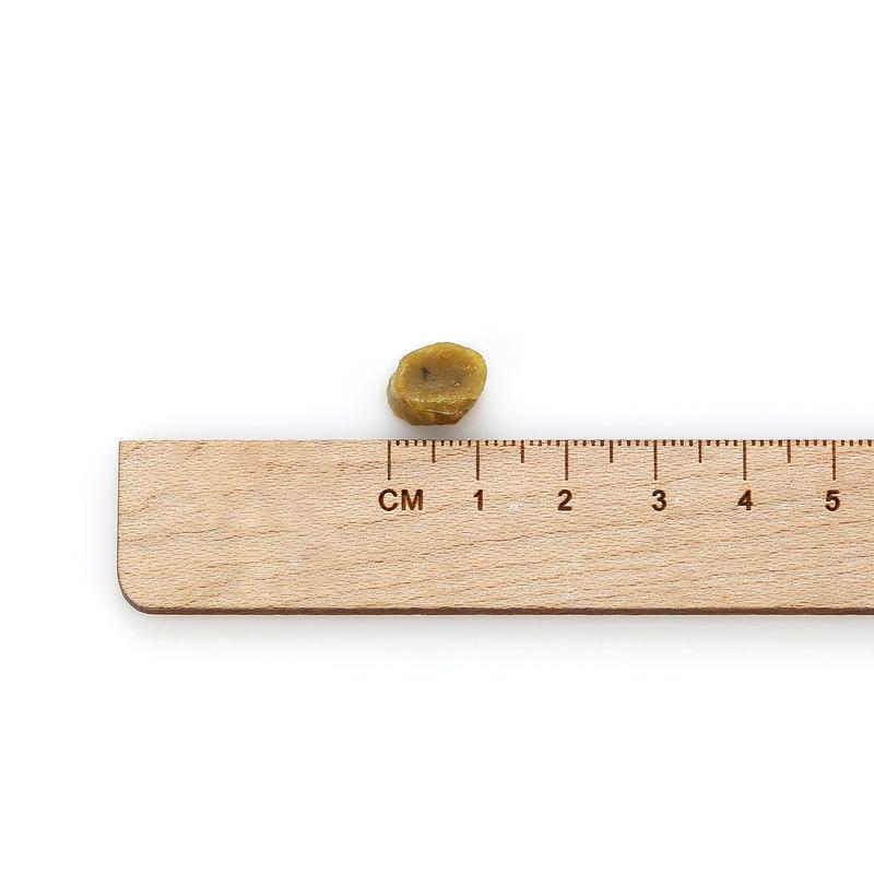 아침애 수제사료 저단백 해조류 1.8kg