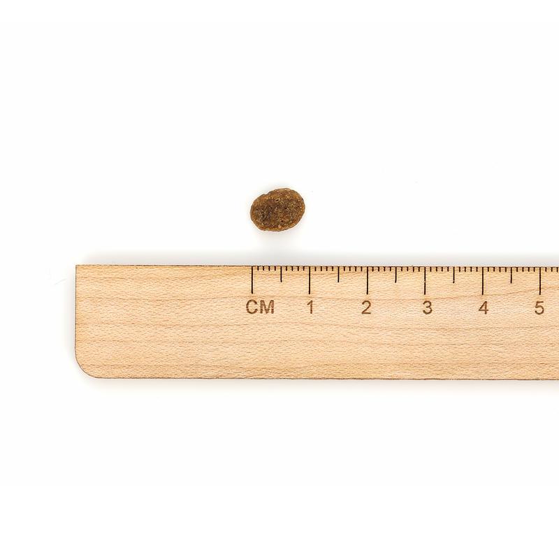 HALO 스몰브리드 헬시웨이트 연어&흰살생선 1.81kg