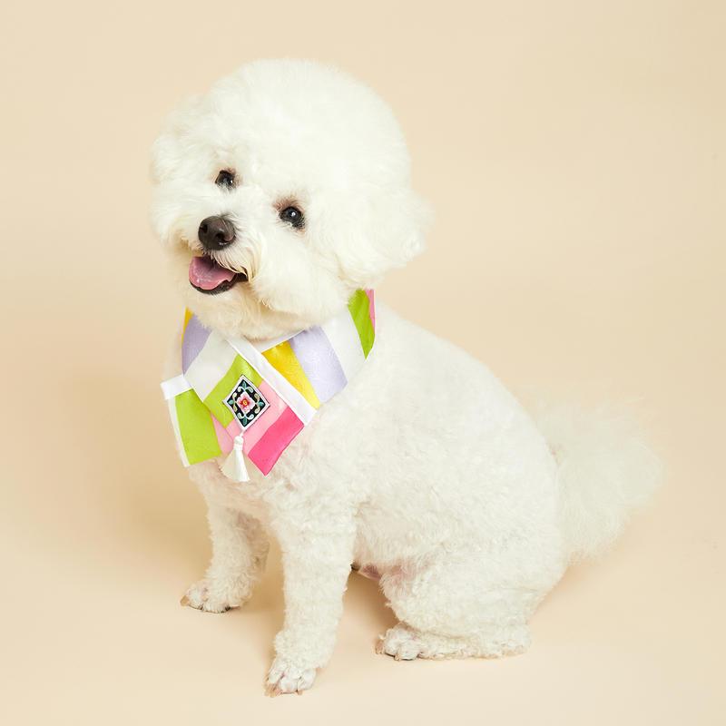 https://img.dogpre.com/web/dogpre/product/83/82183_detail_04313498.jpg
