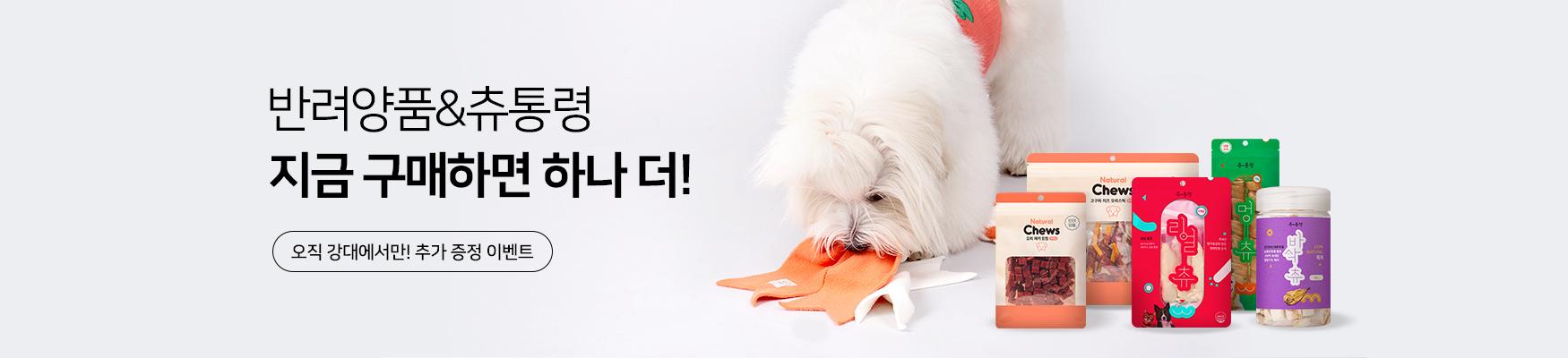 [9월행사] 강대PB