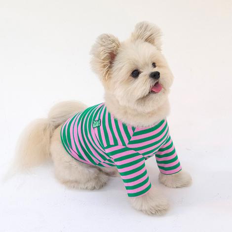 https://img.dogpre.com/web/dogpre/product/85/84551_detail_01403014.jpg