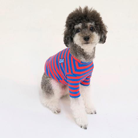 https://img.dogpre.com/web/dogpre/product/85/84563_detail_01390618.jpg